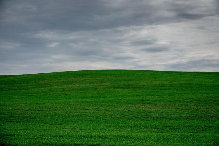 Beauty In Nature Cloud - Sky Day Environment Field Grass Green Color Horizon Horizon Over Land Land Landscape Nature No People Non-urban Scene Ominous Outdoors Plant Rolling Landscape Scenics - Nature Sky Tranquil Scene Tranquility