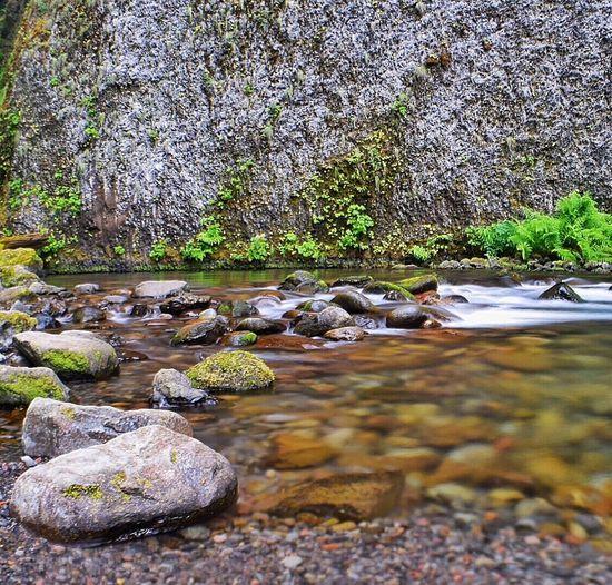 Longexposure Longexposurephotography Taking Photos Enjoying Life Beauty Is In The Eye Of The Beholder Oregon Oregonexplored Hikingadventures Oregonlife Outdoor Photography Long Exposure