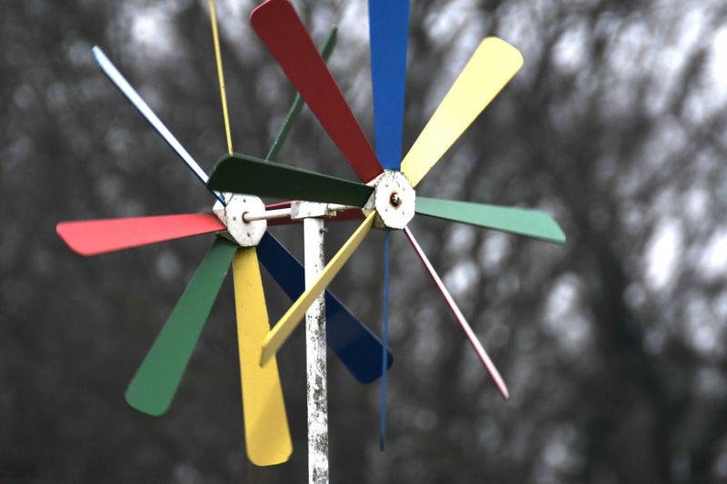 Schräbergarten Acessoire near to the Hamburger Volkspark Colors Joyful Outdoors Pinwheel Toy Schräbergarten Wind Power Windmill Windmill Movement Movement Photography Art Is Everywhere