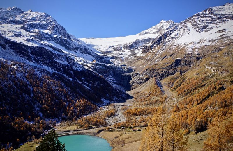 Autumn Alp Grüm