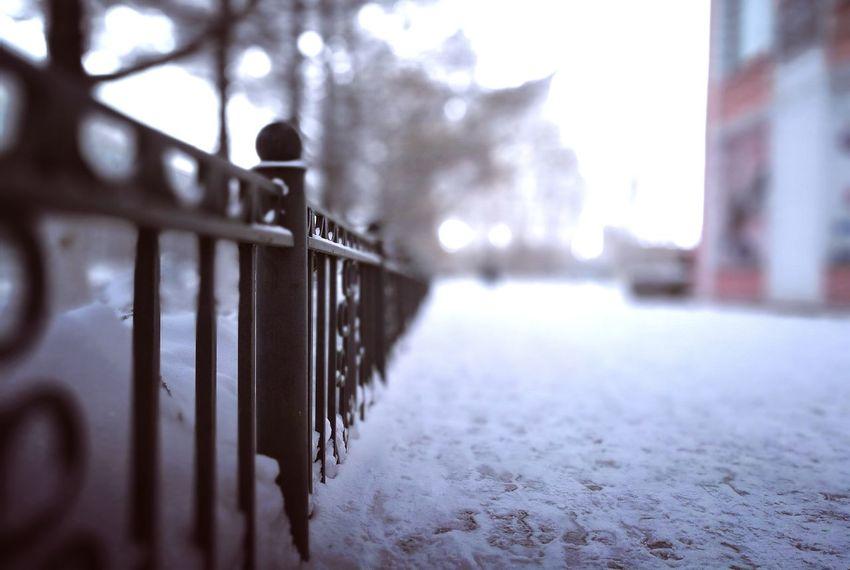 ограда забор дорожка снег зима белый фокус Winter Snow Cold Temperature Day City No People Asfalt