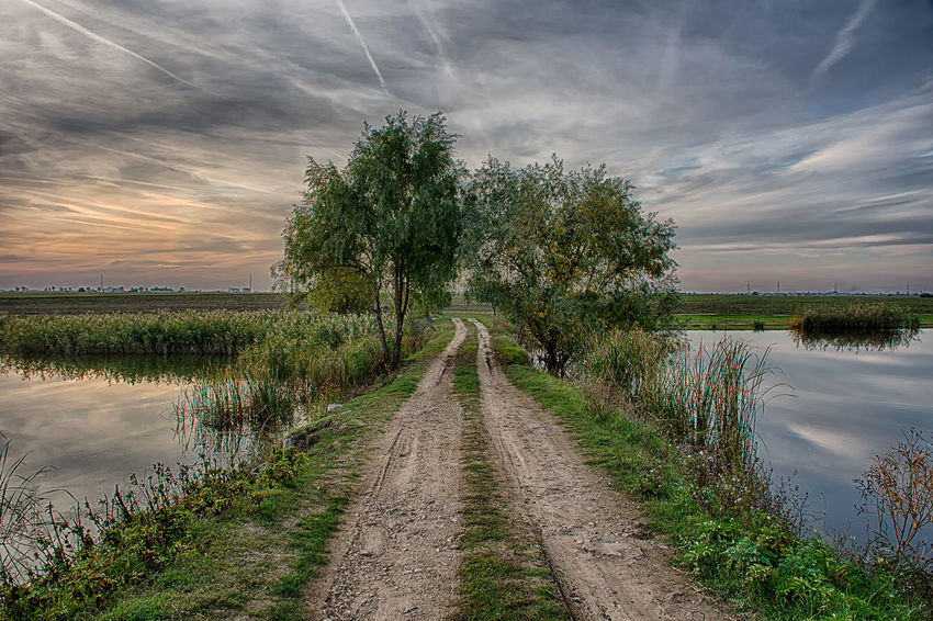 Bridge Beauty In Nature Cloud Cloud - Sky Cloudy Diminishing Perspective Dirt Road Field Grass Growth Landscape Nature Plant Scenics Sky The Way Forward Tranquil Scene Tranquility Tree Vanishing Point Water