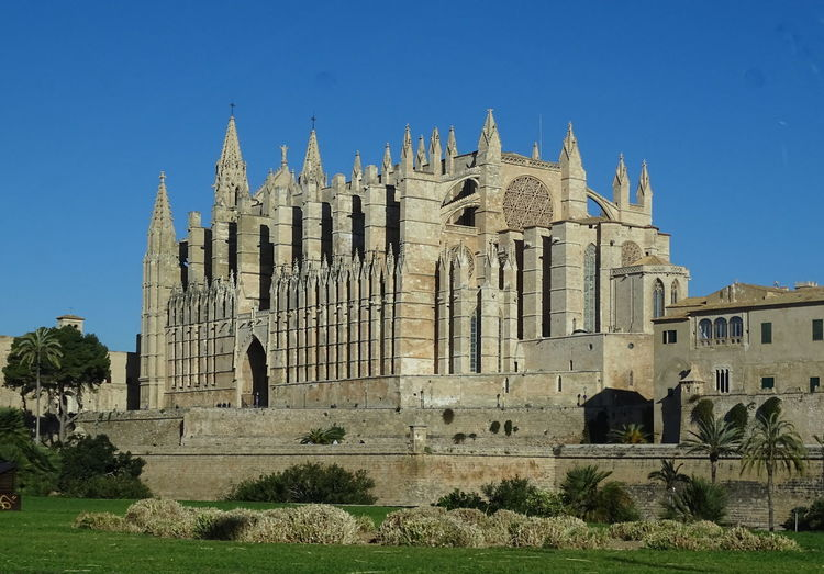 La Seu cathedral Architecture Built Structure Building Exterior Sky History The Past Building Religion Place Of Worship Belief Spirituality Travel Destinations Clear Sky Travel Nature Tourism Blue Day No People Outdoors Ancient Civilization Gothic Style Abbey La Seu La Seu Cathedral Palma De Mallorca Spain Cathedral Of Santa Maria Of Palma