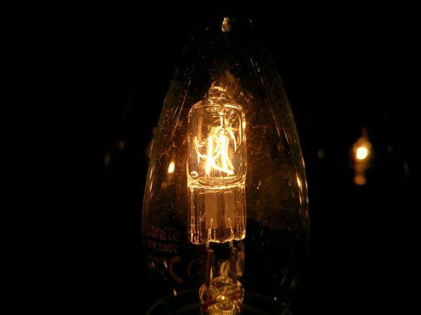 Halogen Halogen Lamps Macro First Eyeem Photo