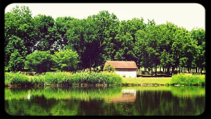 Barn Park Sunny Day Lake #reflection #springfieldmo