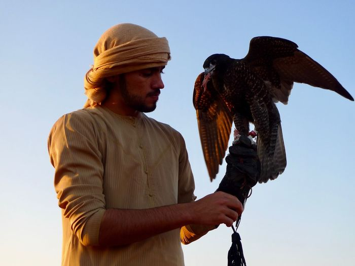 Early in the morning 2 Falconer Falcon Real People One Person One Animal Mid Adult Standing Low Angle View