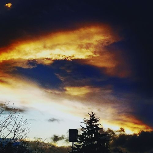 Sunset Cloud - Sky Dramatic Sky Sky Nature No People Beauty In Nature Tree Outdoors Scenics Astronomy Galaxy Washington State Seattle, Washington Puget Sound, Washington Veiwpoint Of A Homeless Seattle Girl Dramatic Sky Day Cloudy Skies Cloud And Sky Cloud Formations