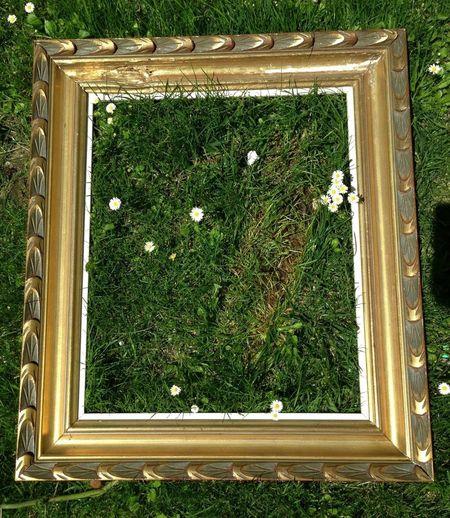 Flowers Grass TheMinimals (less Edit Juxt Photography) Lieblingsteil