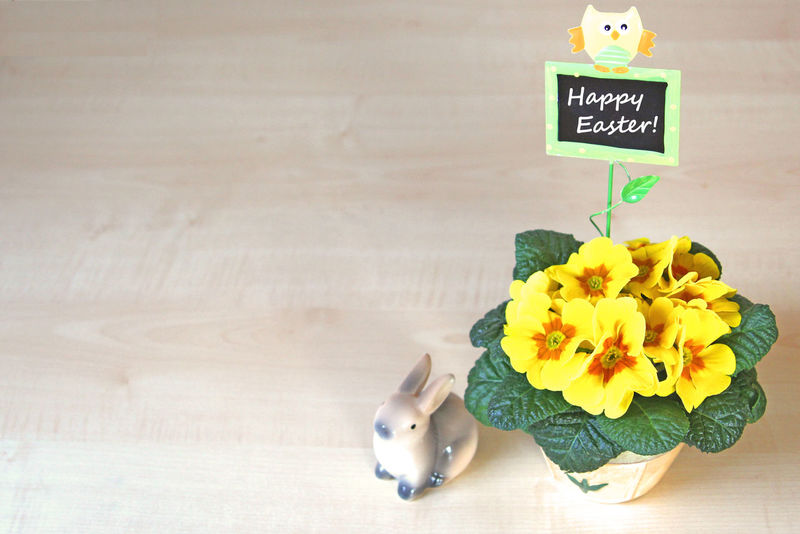 Happy Easter! Flower Freshness No People Nature Day Easter Bunny  Easter Bunny Easter Decoration Celebration Spring Springtime Yellow Primrose Primula Chalkboard Text Copy Space Negative Space Neg Space Bright Background Wood Potted Plant Cute