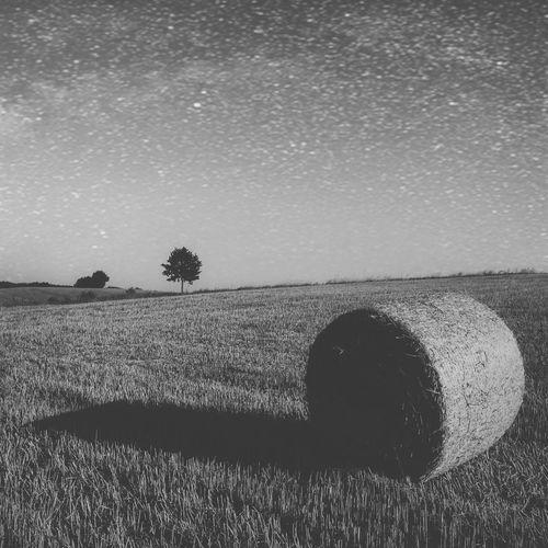 Blackandwhite Black And White Black & White Landscape Landscape_Collection Landscape_photography Sky IPSDark EyeEm Nature Lover Nature