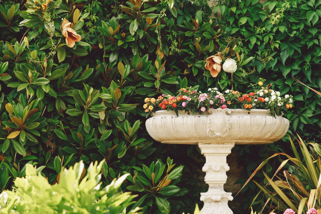Flower Pot Against Plants In Park