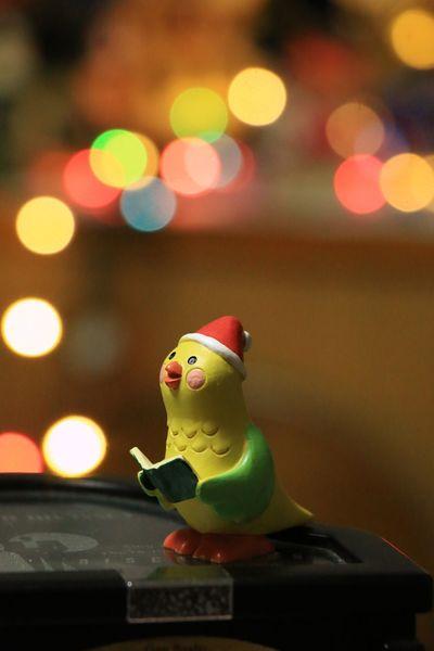 一緒に歌おう✨✨ Christmas サンタクロース