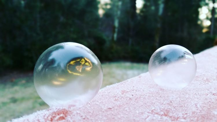 Reflection Nature Outdoors Water Crystal Ball Fragility Tree Close-up Day No People Space Frozen Bubbles FrozenBubbles Ice Cold Temperature Cold Weather Winter Cold Winter ❄⛄ Frost Pnwlife Soap Sud Frosty Mornings Beauty In Nature Landscape