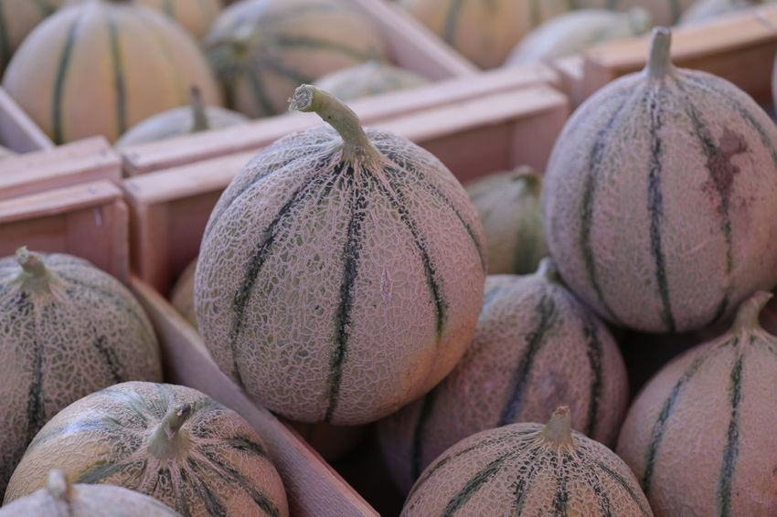 Melons Close-up Day Food Food And Drink Freshness Healthy Eating No People Outdoors Still Life