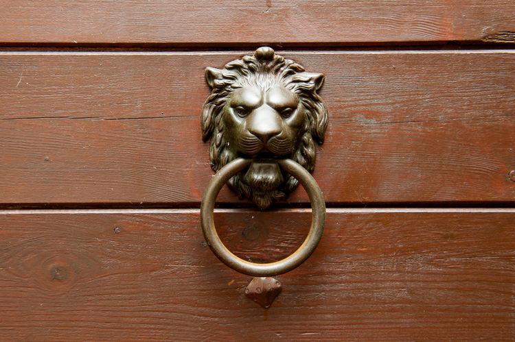 Lion decoration doorknob Art And Craft Close-up Day Door Door Knocker Doorknob Gold Colored Lion - Feline Metal No People Outdoors Wood - Material