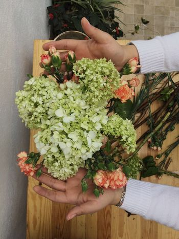 Spring Bouquet Flowers orange Orange Woman Bouquet Flower Green Color Greenery One Woman Only Womans Hands Freshness DIY Green Leafs Real People Hydrangea Love Entrepreneur Cold Temperature Warm Colors Organized natural Natural Floral Floral Floral Pattern Handmade Flower Tutorial