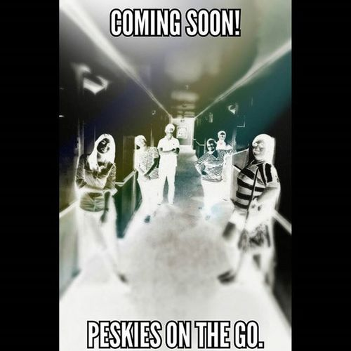 Peskies on the go. Coming Soon! 👍👌😁💞🌝🌙🎉🎆🎶🍻🍸🍴📷📹🎥 PlainHappiness Ooohhhsometimes Beforetherave Walktothemoon Peskiesonthego