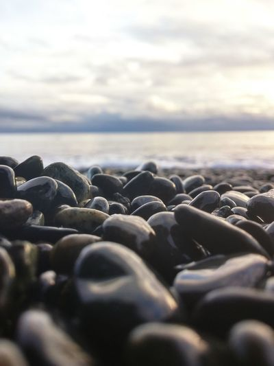 Rocks on the beach macro Rocksonthebeach Pacificnorthwest