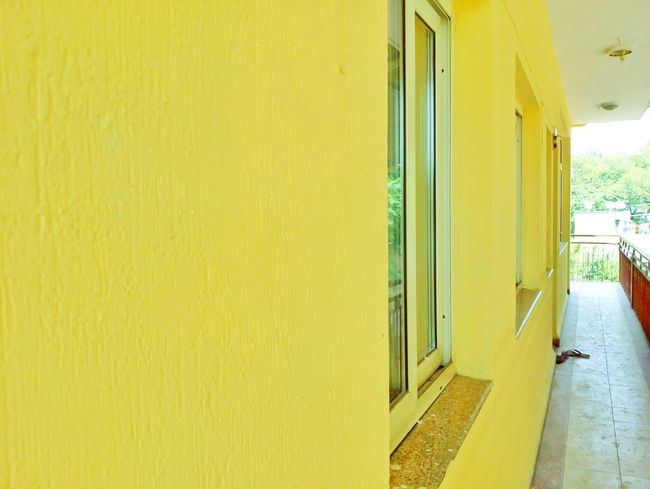 Paint The Town Yellow Yellow Architecture Built Structure Building Exterior Residential Building Outdoors No People City Mobilephotography Mobile Photography Colored Background MotoE Yellow Background Full Frame Architecture