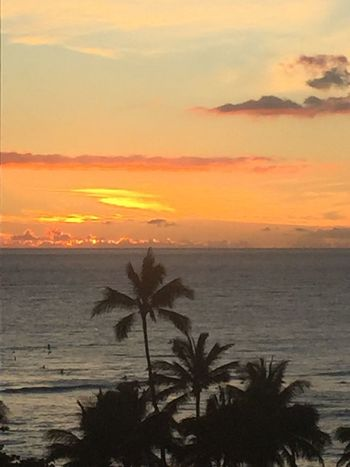 Palm Trees 🌴 Pacific Pacific Sunset Pacific Ocean Sky Pacific Ocean View Ocean Orange Color Clouds And Sky Silhouette Horizon Over Water No People Water No Edit/no Filter An Eye For Travel