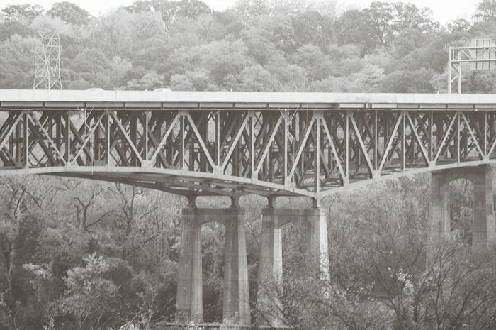 Architecture Built Structure Bridge - Man Made Structure Blackandwhite Photography Black & White America Merica EyeEm Gallery EyeEm Best Shots Bridge View Bridges_aroundtheworld