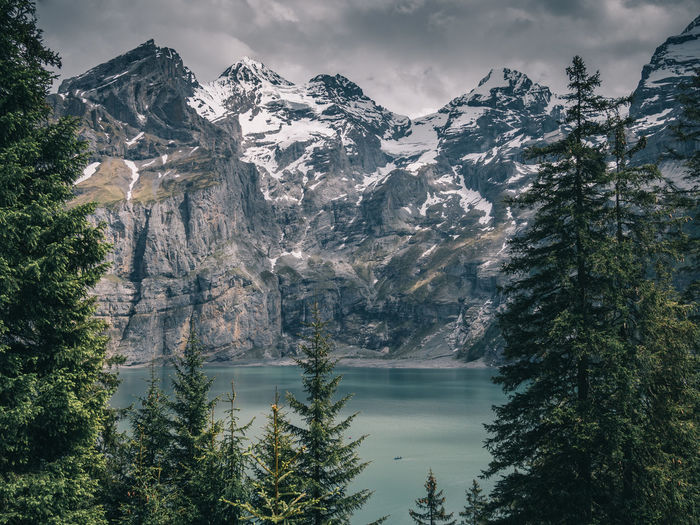 Tree Plant Mountain Beauty In Nature Scenics - Nature Water Nature Sky Tranquil Scene Tranquility Lake Cold Temperature No People Non-urban Scene Winter Environment Cloud - Sky Day Outdoors Snowcapped Mountain Pine Tree Mountain Peak Coniferous Tree Oeschinensee
