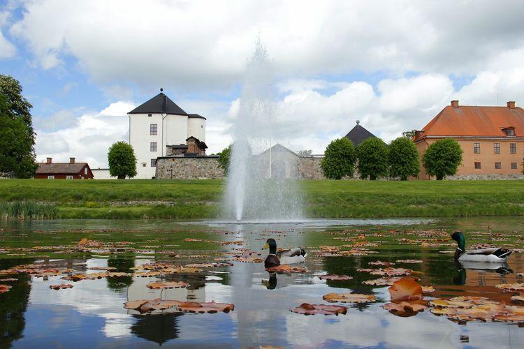 Ducks in lake and buildings against sky