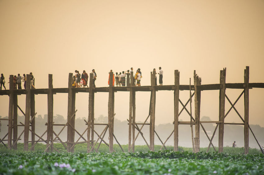 U Bein Bridge at sunset, Mandalay Myanmar Architecture Burma Architecture Grass Mandalay Mandalay,Myanmar Teak Wood Bridge Bridge - Man Made Structure Burma Burmese Grassland Lake Landscape Landscape_photography Landscapes Myanmar Myanmar View Nature Outdoors Sunset Teak Teak Wood Bridge U Bein U Bein Bridge Wood Bridge