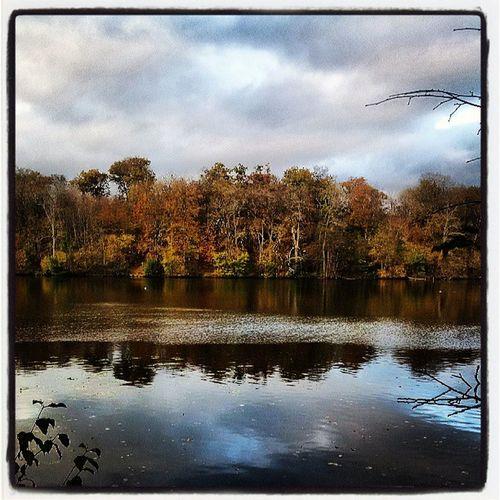 La vue sur le lac des étangs de Commeille Coyelaforet étang Lac Commeille