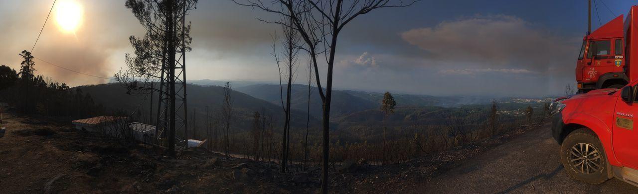 Portugal Incendios Forestales Ume Cernachebonjardim São Macário Serta Pedrogaogrande Incendio Inferno🔥 Verão Bombeiros Bomberos Firefighters Florest Floresta 🌳