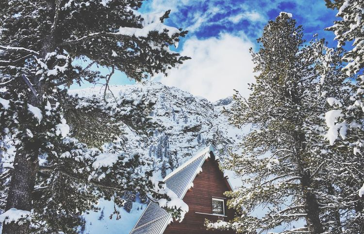 Snow Winter Cold Temperature Nature Tree Beauty In Nature Scenics Sky Mountain Architecture Beauty In Nature Winter