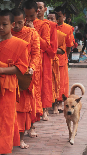 Organism Monk  Thailand Countryside Street Life Culture Buddhism Temple The Week on EyeEm Full Length Pets Religion Tradition Men Dog Spirituality Orange Color Robe