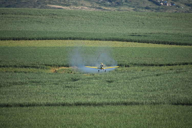 Airplane flying over agricultural field