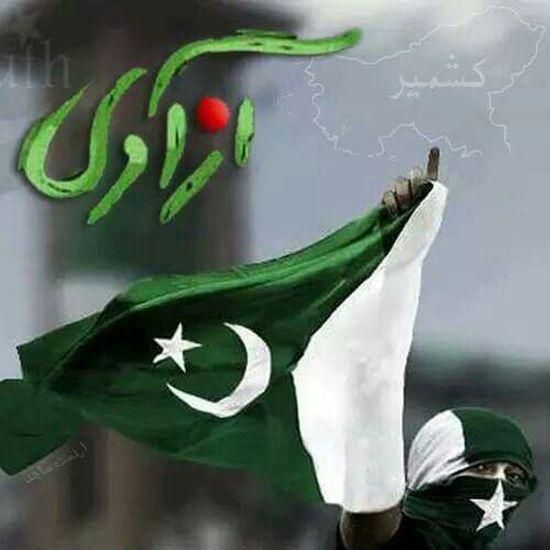 Beauty Of Pakistan HappyIndependenceDay Green Pakistan Longlivepakistan Village Life