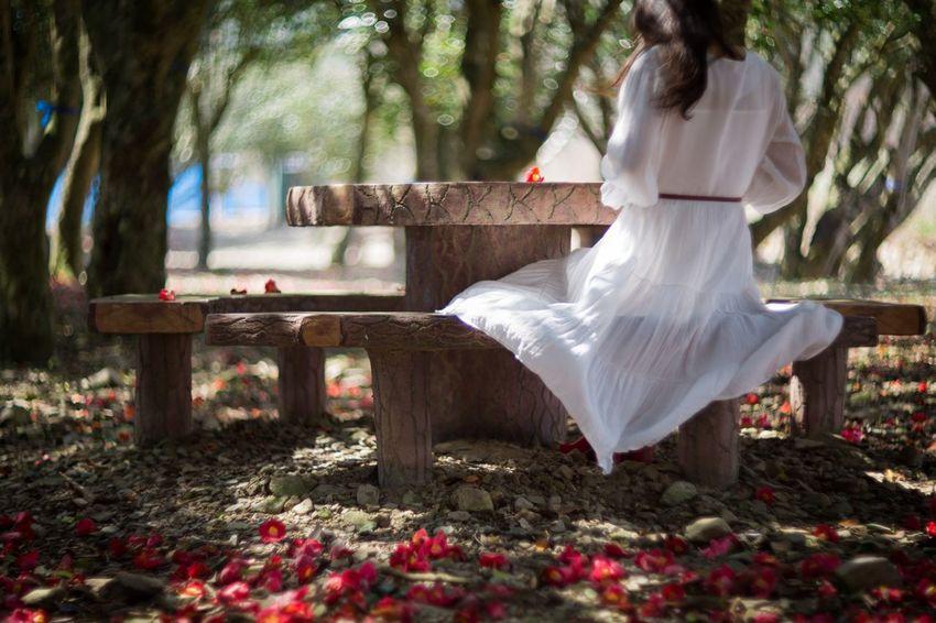 그녀의 뒷모습 Korea Tree Young Women Flower Wedding Dress Beauty Bride Evening Gown Flower Head Pink Single Flower Blooming