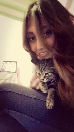 Cats Dinnerwithfriends Somuchlove♥
