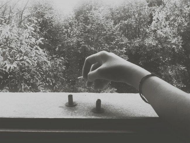 Smoking Village Life Momento Need More Space 💧