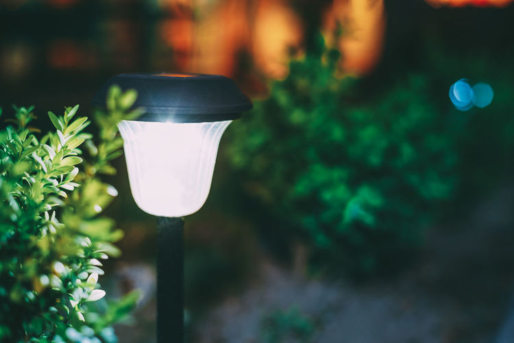 Close-up of illuminated light bulb in yard