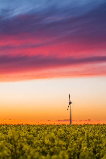 Agriculture Alternative Energy Cloud - Sky Colorful Colorful Sky Eco Energy Ecology Environment Field Landscape Orange Color Outdoors Renewable Energy Rural Scene Sky Spring Summer Sunset Warm Wind Turbine