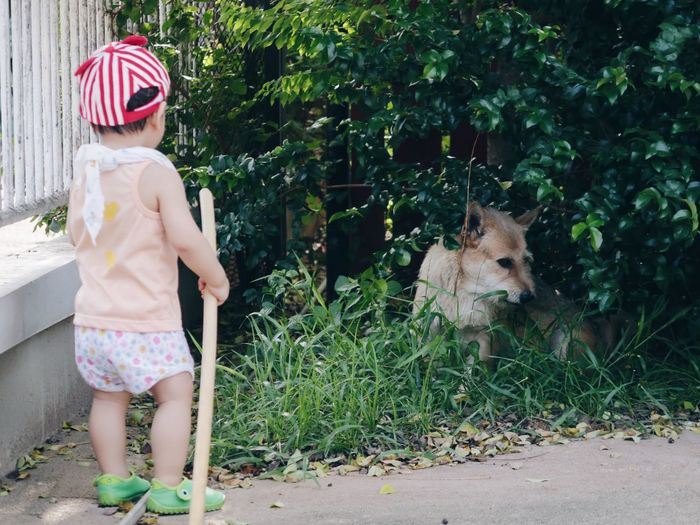 Boy with stick looking at dog against plants