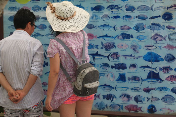 Back View Casual Clothing Chinese Tourists Day Fishes Lifestyles Maldives Paradise Island Sign Standing