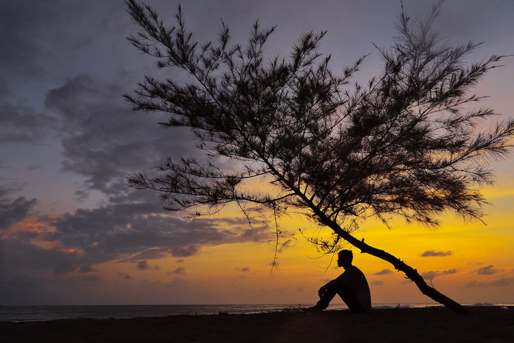 Silhouette man by tree against sky during sunset