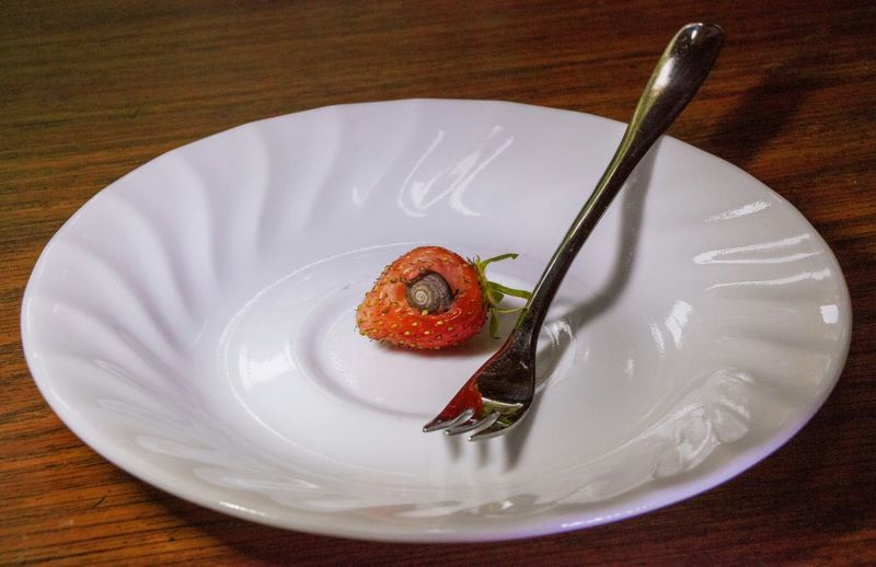 High Angle View Of Snail In Strawberry On Plate