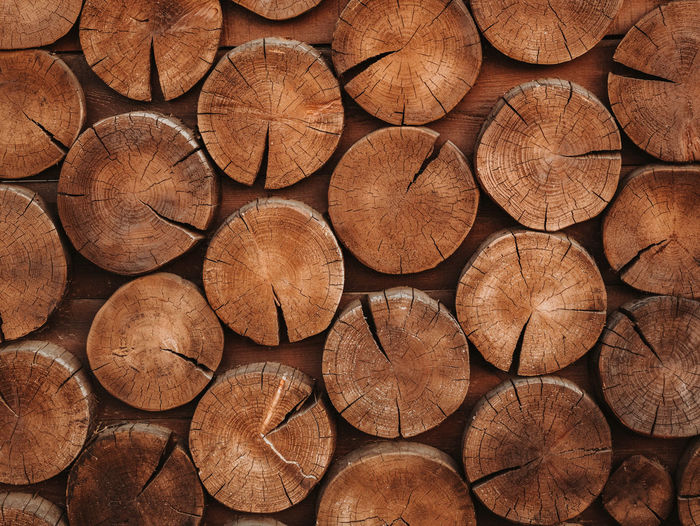 Abstract photo of pile natural wooden logs background, top view Abundance Backgrounds Brown Chopped Close-up Deforestation Design Firewood Fuel And Power Generation Full Frame Large Group Of Objects Log Lumber Lumber Industry No People Pattern Shape Stack Timber Tree Tree Ring Wood Wood - Material Woodpile
