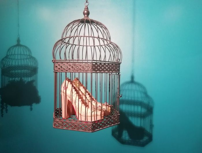 The Mobile Photographer - 2019 EyeEm Awards Bird Trapped Cage Hanging Birdcage The Creative - 2019 EyeEm Awards The Minimalist - 2019 EyeEm Awards My Best Photo