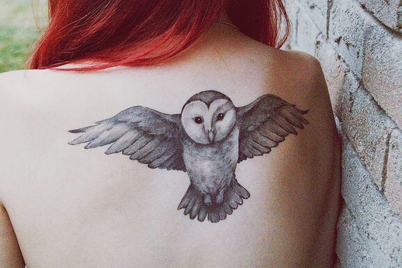 ??? Harrypotter Weasley Owl Tattoo Tattoo