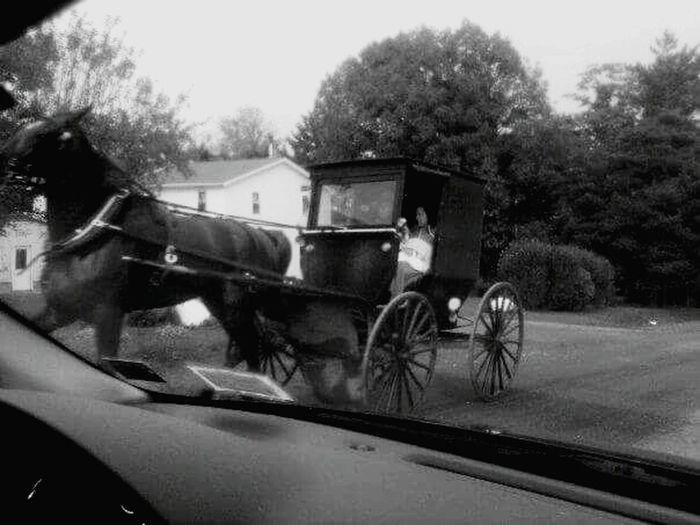 Amish Amish Country Amish Amish Life Amish Wagon