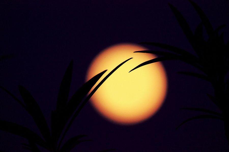 Moon shots Showcase March Eye Em Best Shots -Landscapes EyeEm Best Shots - Nature Moon Moon Shots Moonlight Moon Silhouette