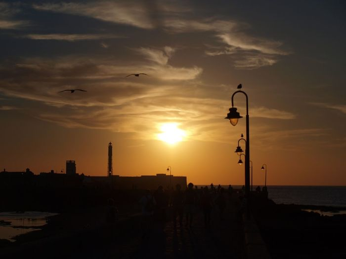 📍Cadiz, Spain 🇪🇸 2k16 Sunset Silhouette Sun Street Light Tranquil Scene Scenics Tranquility Beauty In Nature Sky Nature Orange Color Flying Water Calm Outline Outdoors Cadiz Majestic Tranquility Bird Taking Photos Beauty In Nature Moody Sky Spire  No People