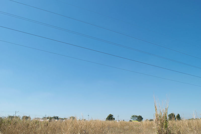 Low Angle View Of Field Against Clear Blue Sky